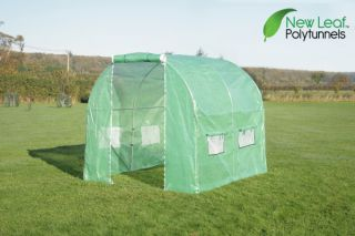 New Leaf Tunnelkas 2,5m x 2m